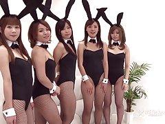 Www darmowe filmy erotyczne pl bunny japoński orgia (bez cenzury jav)